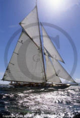 moonbeam IV